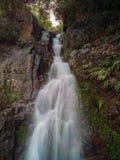 小瀑布通过有些岩石 免版税图库摄影