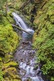 小瀑布, Sol Duc河,奥林匹克国家公园, WA 免版税图库摄影