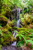 小瀑布des忘却,康塔尔省,奥韦涅,法国 免版税库存照片