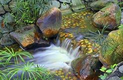小热带瀑布在庭院里 免版税库存图片