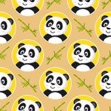 小熊猫无缝的样式 免版税库存照片