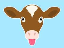 小牛朝向伸出舌头 库存照片