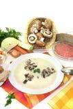 小牛肉奶油色汤用荷兰芹 库存照片