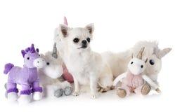小犬座和独角兽 库存图片