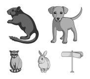 小狗、啮齿目动物、兔子和其他物种 动物在单色样式传染媒介标志库存设置了汇集象 免版税库存照片