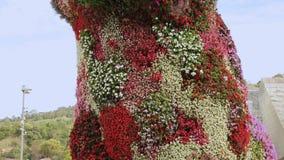 小狗多彩多姿的花卉雕塑在毕尔巴鄂,创造性的花设计,旅行 股票录像