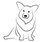 小狗威尔士 图库摄影