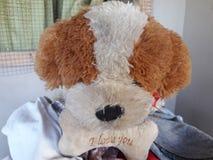 小狗材料玩具 库存图片