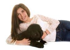 小狗纽芬兰狗和青少年 免版税库存图片