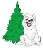 小狗adn绿色树 免版税库存图片