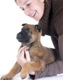 小狗malinois和妇女 免版税库存照片