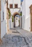 小狭窄的胡同在海岛的希腊老美丽的镇Lindos 库存照片