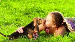 小猎犬吃从在妇女的胳膊的手的小狗 股票录像