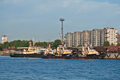 小猛拉在港口 免版税库存图片