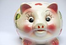 小猪瓷 库存图片