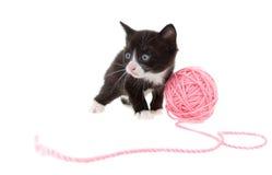 小猫字符串 免版税库存图片