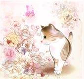 小猫小的平纹 免版税库存图片
