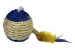 小猫的玩具以球的形式 免版税库存照片