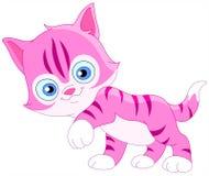 小猫面带笑容 免版税图库摄影