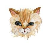 小猫水彩和墨水顶头例证 库存照片
