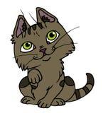 2小猫 免版税库存照片