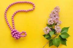 小珠和淡紫色树花 库存照片
