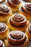 小甜面包小圆面包用桂香和可可粉 特写镜头 Kanelbulle -瑞典自创点心 库存图片