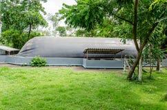 小生物气植物在泰国 免版税库存图片
