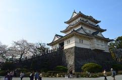 小田原城堡 图库摄影