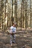 小男孩举的树在森林地 图库摄影