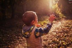 小男孩传染性的泡影在秋天森林里 免版税库存照片