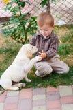 小男孩使用与一只白色小狗拉布拉多 库存照片