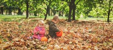 小男孩和女孩使用与秋叶本质上 库存图片