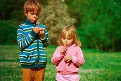 小男孩和女孩吹蒲公英,在春天自然的戏剧 免版税库存照片