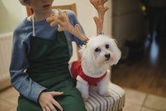 小男孩和他的狗在圣诞节 免版税图库摄影