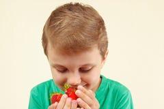 小男孩嗅到的极少数甜红色草莓 免版税库存照片