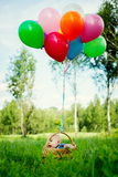 小男孩在与五颜六色的气球的一个篮子坐 库存照片