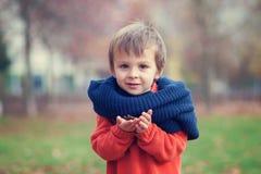 小男孩在公园 免版税库存图片
