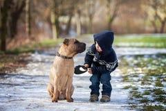 小男孩在有他的狗朋友的公园 免版税库存图片