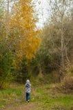 小男孩在秋天公园, 免版税库存照片