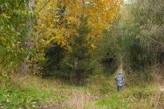 小男孩在秋天公园, 免版税图库摄影