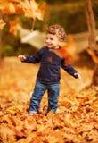 小男孩在秋天公园 库存照片