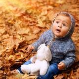 小男孩在秋天森林里 库存照片