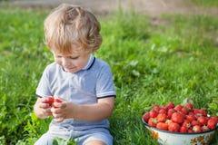 小男孩在草莓农场的二年 免版税图库摄影