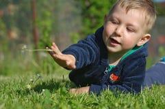 小男孩投掷雏菊 库存图片