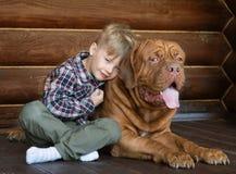 小男孩拥抱大红葡萄酒狗 免版税库存照片
