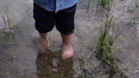 小男孩沿河走 孩子在湖附近跑 t 使用在水附近的愉快的婴孩 ?? 影视素材