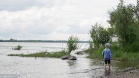 小男孩沿河走 孩子在湖附近跑 t 使用在水附近的愉快的婴孩 影视素材