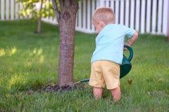 小男孩浇灌的树在庭院里 免版税库存图片