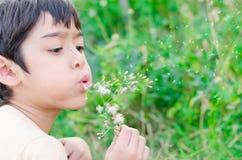 小男孩漂浮对空气的打击花在庭院里 免版税库存图片